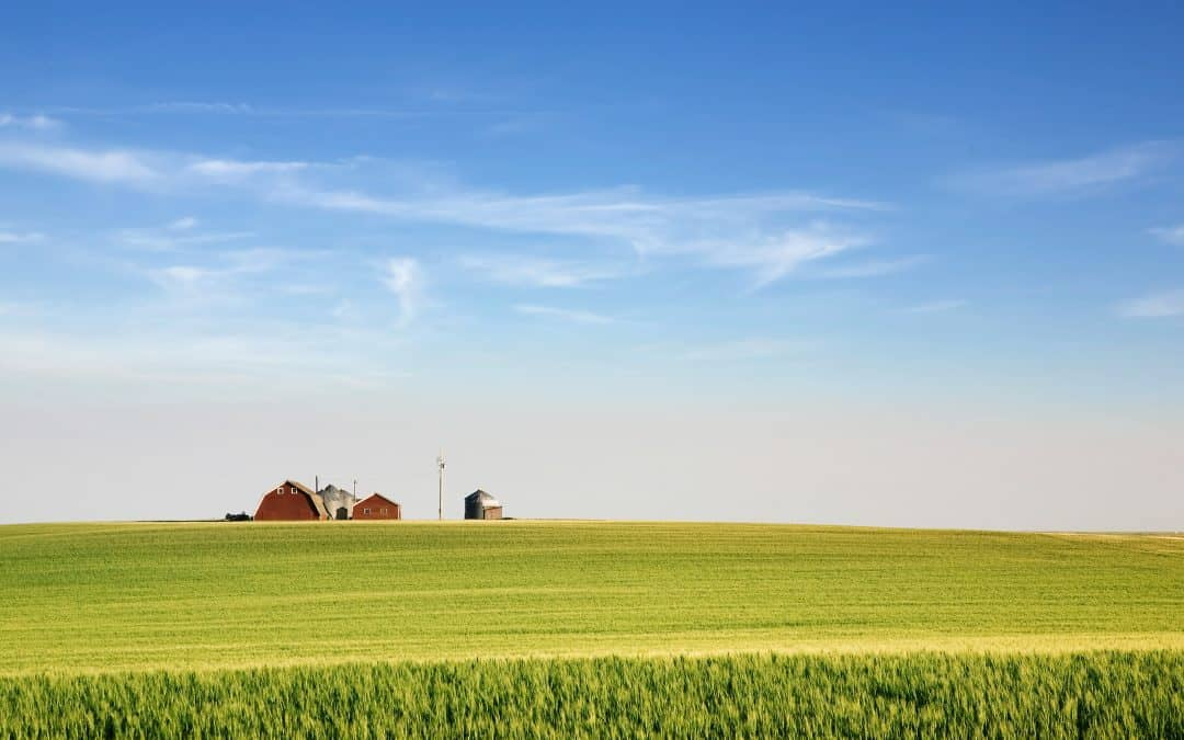 Tips For Buying Farmland in Saskatchewan