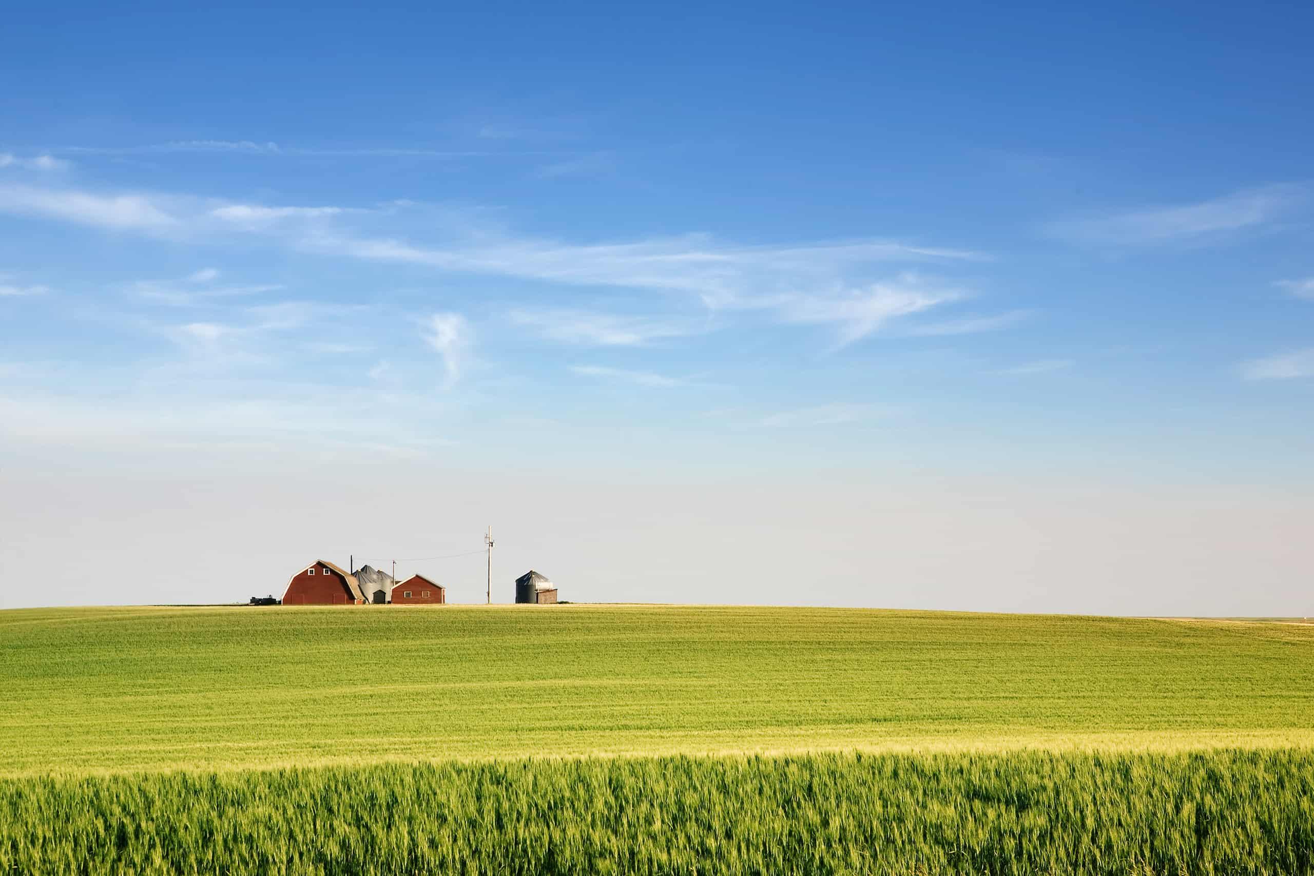Tips for Buying Farmland in Saskatchewan | Sheppard Realty