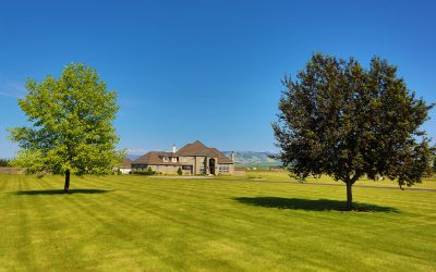 5 Thing to Consider When You're Buying an Acreage