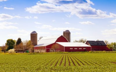 5 Impressive Saskatchewan Farming Facts