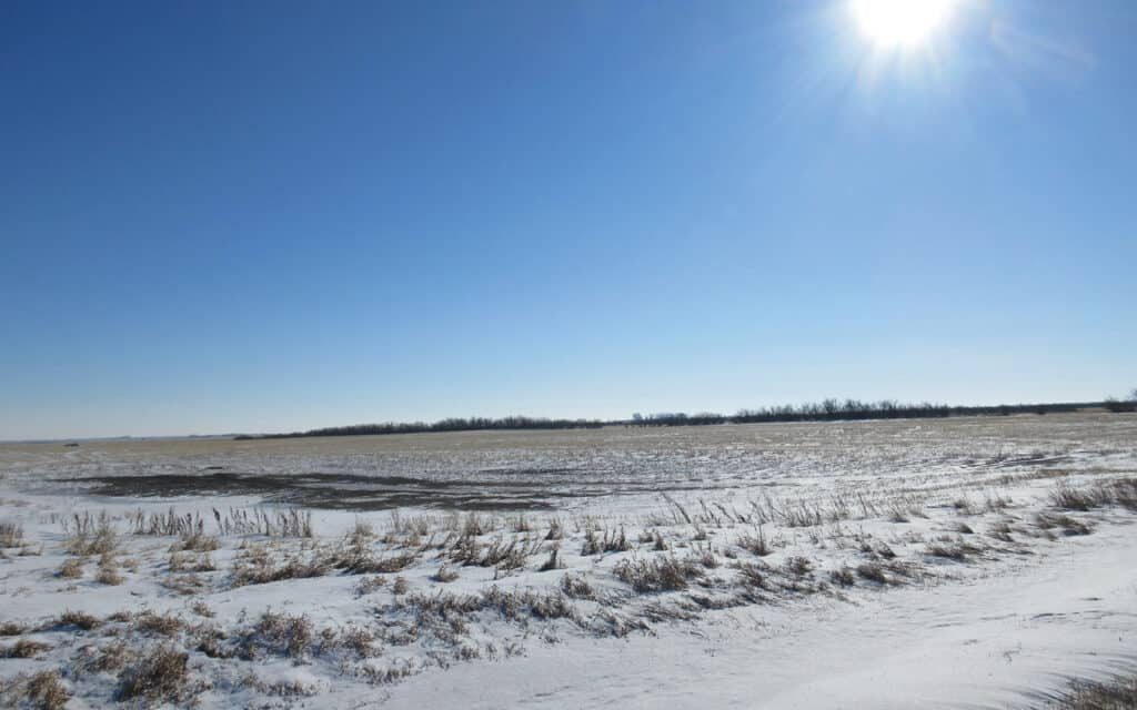 NEW LISTING – 959 Acres Near Pangman, SK