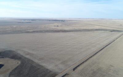 NEW LISTING – 159 Acres Near Sedley, SK!